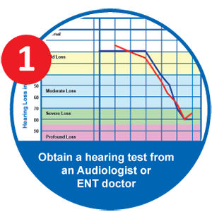 EarCentric PRO200 Hearing Aid Custom Programm Step 1: Audiogram